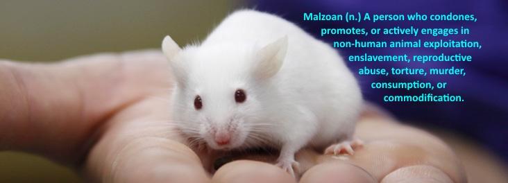 Malzoism